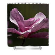 Magnolia Galaxy Shower Curtain