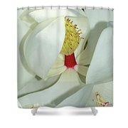 Magnolia Grace And Beauty Shower Curtain