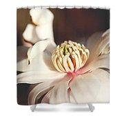 Magnolia In Bloom Shower Curtain
