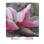 Magnolia In Shadow Shower Curtain