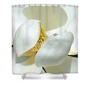 Magnolia Macro Shower Curtain