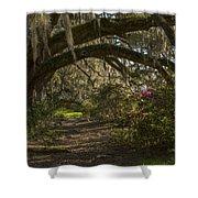 Magnolia Plantation Shower Curtain