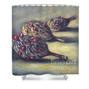 Magnolia Seedpods Shower Curtain