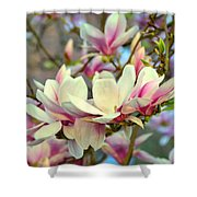 Magnolia Spring Shower Curtain