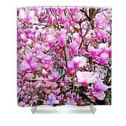 Magnolia Tree Beauty #1 Shower Curtain