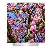 Magnolia Tree Beauty #3 Shower Curtain