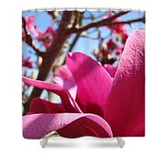 Magnolia Tree Pink Magnoli Flowers Artwork Spring Shower Curtain