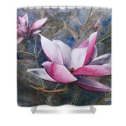 Magnolias In Shadow Shower Curtain