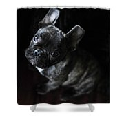 Magoo IIi Shower Curtain