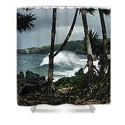 Mahama Lauhala Keanae Peninsula Maui Hawaii Shower Curtain