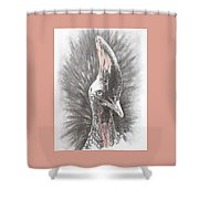 Mahvelous Simply Mahvelous Shower Curtain