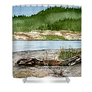 Maine Beach Wood Shower Curtain