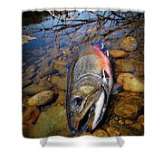 Maine Brookie Shower Curtain