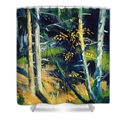 Maine Landscape 1919 Shower Curtain