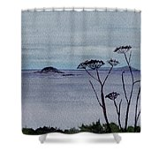 Maine Moody Distance Shower Curtain