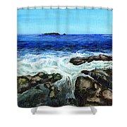 Maine Tidal Pool Shower Curtain