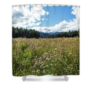 Maisie In A Field Of Flowers Shower Curtain