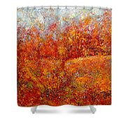 Majestic Autumn Shower Curtain
