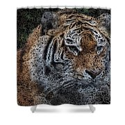 Majestic Bengal Tiger Shower Curtain