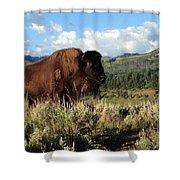 Majestic Bison Shower Curtain
