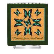 Majestic Green Swallowtail Wheel Shower Curtain