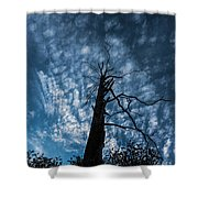 Majestic Nature On Beauty In Death Shower Curtain