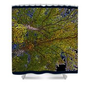 Majestic Trees Abstract Poster 2 Shower Curtain