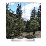 Majesty Squared Shower Curtain
