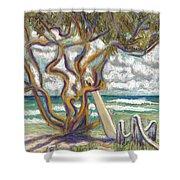 Malaekahana Tree Shower Curtain by Patti Bruce - Printscapes