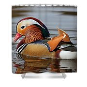 Male Mandarin Duck Shower Curtain