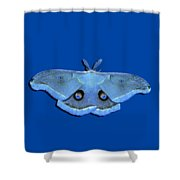 Male Moth Light Blue .png Shower Curtain