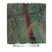 Male Nude Torso 1 Shower Curtain