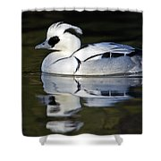 Male Smew Shower Curtain