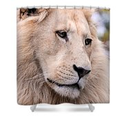 Male White Lion ... Thabo Shower Curtain