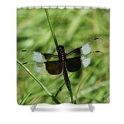 Male Widow Skimmer Dragonfly #4 Shower Curtain