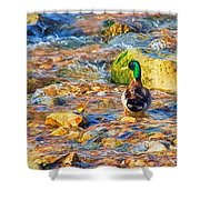 Mallard At The River - Impressions Shower Curtain