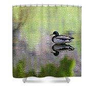 Mallard In Mountain Water Shower Curtain