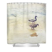 Mallards At The Chattahoochee River Shower Curtain