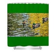Mallards On Golden Pond 3 Shower Curtain