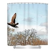 Mallard's Perspective Shower Curtain