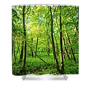 Mallory Woods Shower Curtain