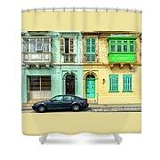 Maltase Style Doors And Windows  Shower Curtain