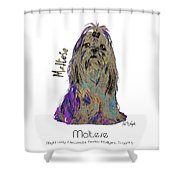 Maltese Pop Art Shower Curtain