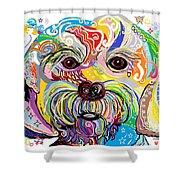 Maltese Puppy Shower Curtain by Eloise Schneider