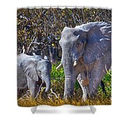 Mama And Baby Elephant Shower Curtain