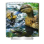 Mama And Chick Shower Curtain