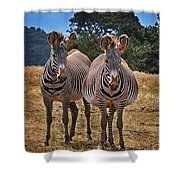 Mama And Friend Shower Curtain by Melinda Hughes-Berland