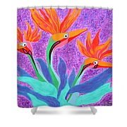 Mama And Her Chicks By Ken Tesoriere Shower Curtain