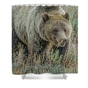 Mama Grizzly Blondie Shower Curtain