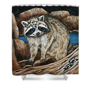 Mama Racoon Shower Curtain
